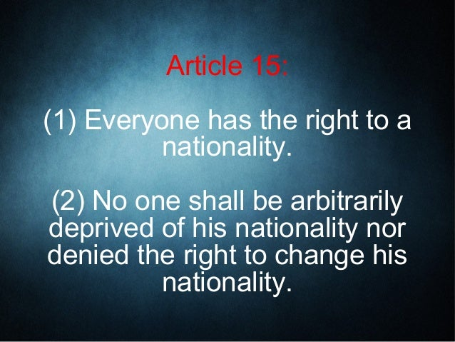 article 13 - photo #30