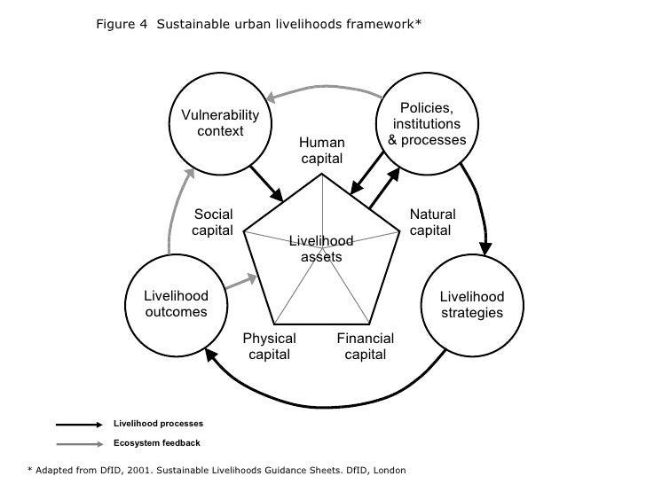 Figure 4  Sustainable urban livelihoods framework* * Adapted from DfID, 2001. Sustainable Livelihoods Guidance Sheets. DfI...