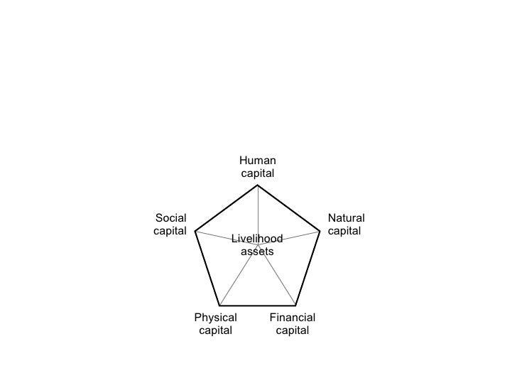 Livelihood assets Social capital Physical capital Financial capital Natural capital Human capital