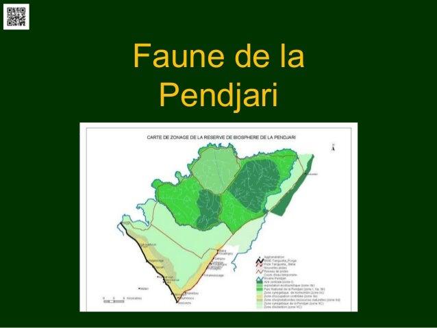 Faune de la Pendjari