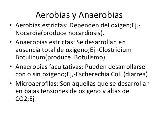 Bacterias Cocos Y Bacilos