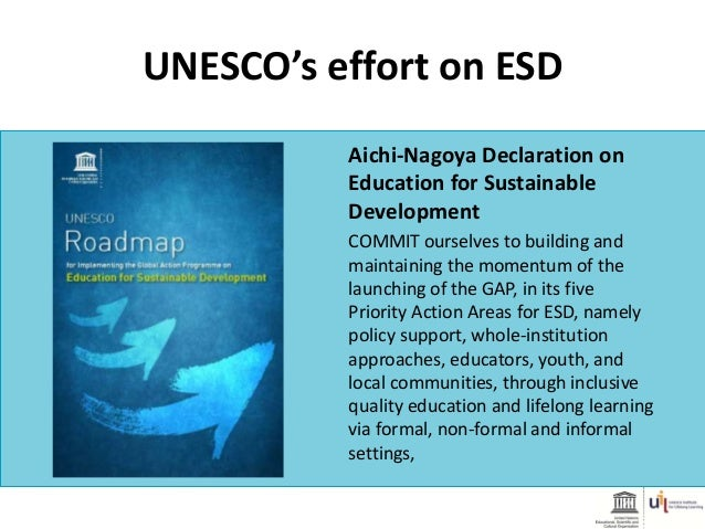 Recommendations by UN Sustainable Development Goal's Steering Committee for Education