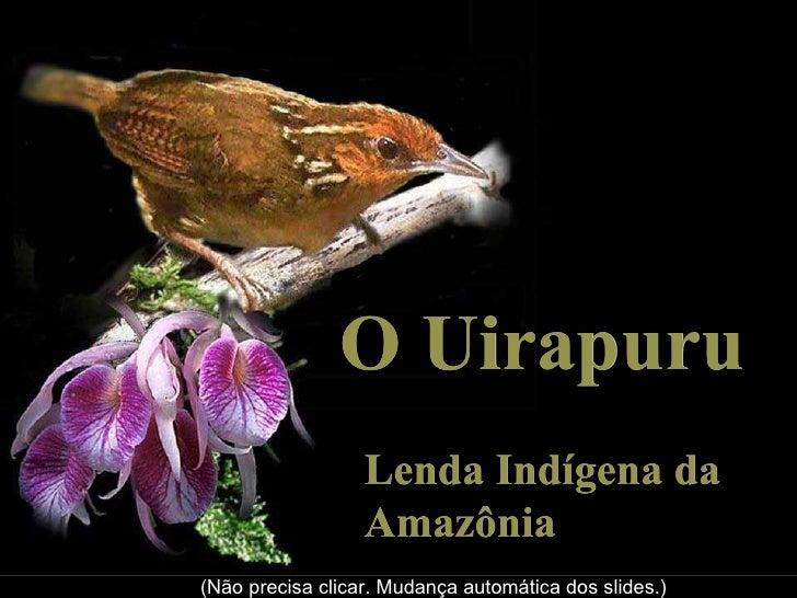O Uirapuru                  Lenda Indígena da                  Amazônia(Não precisa clicar. Mudança automática dos slides.)