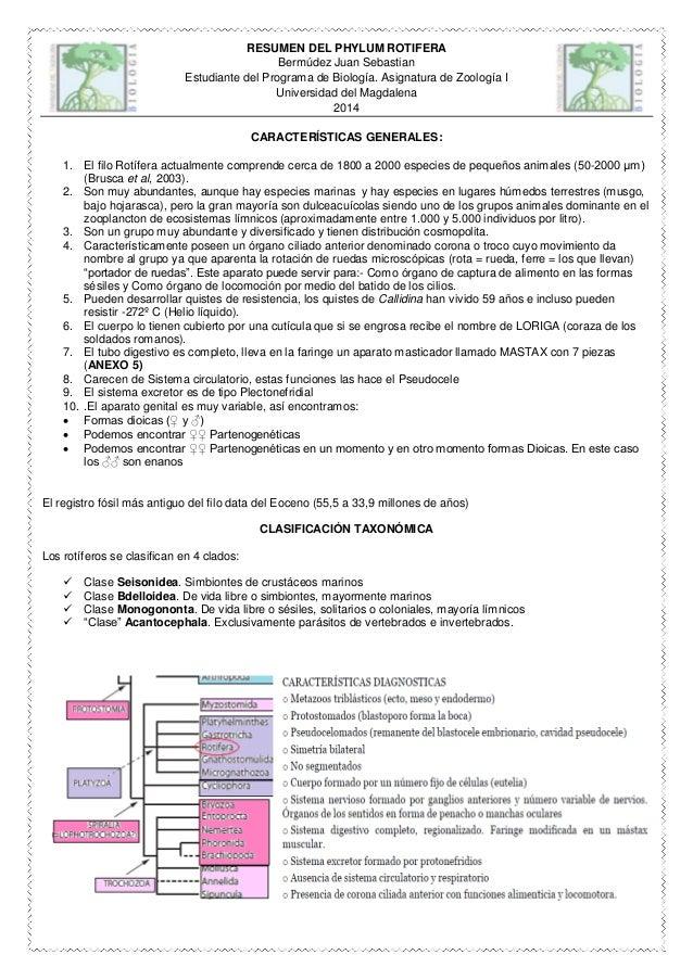 Resumen del phylum rotifera