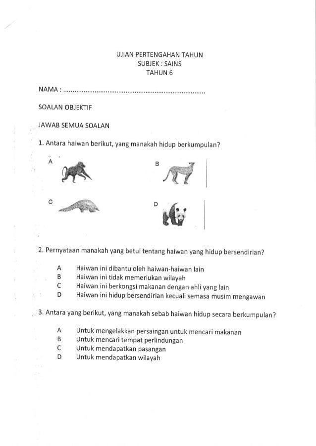 Ujian Sains Thn 6