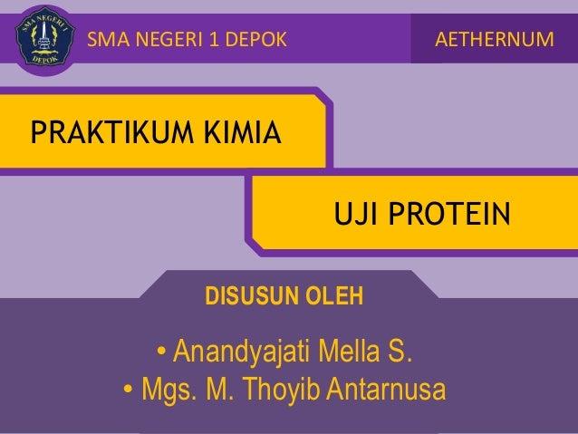 Praktikum Kimia Uji Protein
