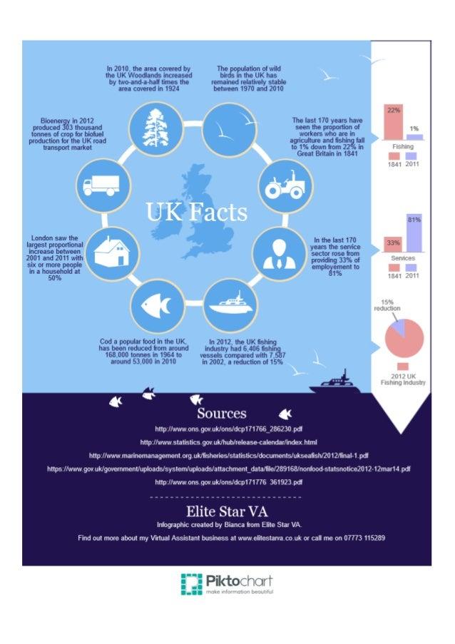 Bianca Botten - Elite Star VA - UK Facts Infographic