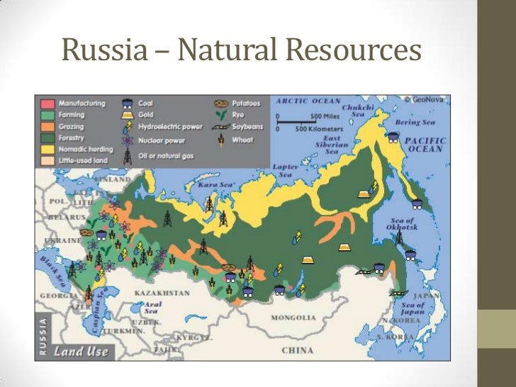 List of Russia's Natural Resources | Synonym