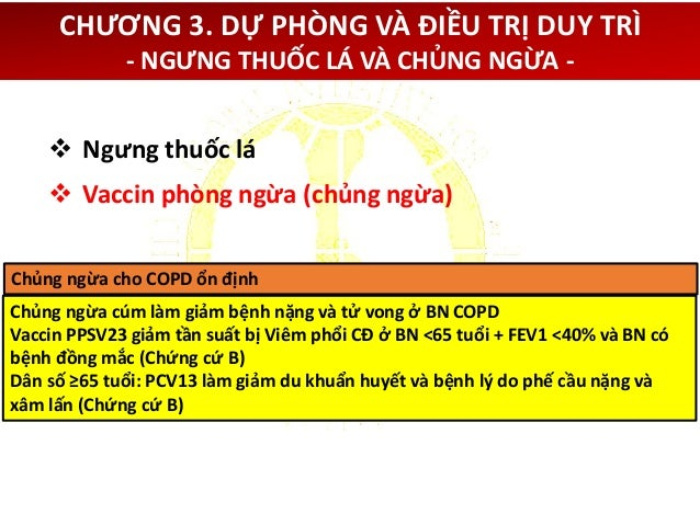 CHƯƠNG 3. DỰ PHÒNG VÀ ĐIỀU TRỊ DUY TRÌ - THUỐC ĐIỀU TRỊ COPD ỔN ĐỊNH - Thuốc dùng duy trì trong COPD Thuốc Hít (mcg) Phun ...