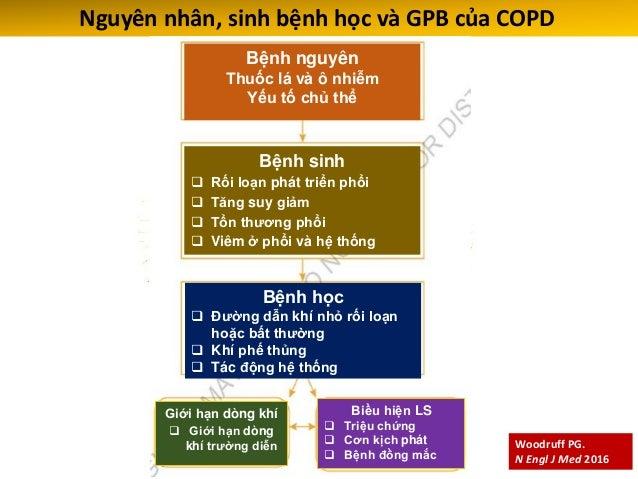 Nguyên nhân, sinh bệnh học và bệnh học của COPD GOLD 2016 Bệnh ĐDK nhỏ Viêm ĐDK Xơ và ứ đàm ĐDK Tăng sức cản ĐDK Phá hủy n...