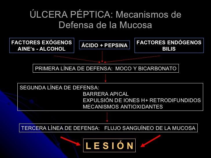 ÚLCERA PÉPTICA: Mecanismos de Defensa de la Mucosa FACTORES EXÓGENOS AINE's - ALCOHOL ÁCIDO + PEPSINA FACTORES ENDÓGENOS B...