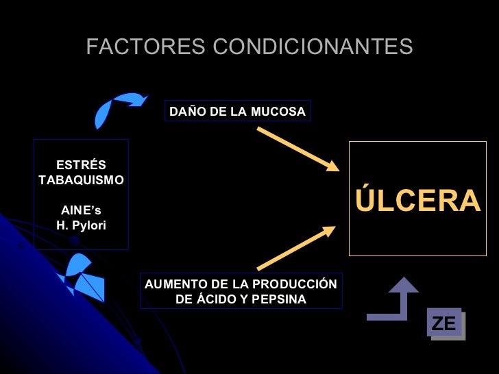 FACTORES CONDICIONANTES ESTRÉS TABAQUISMO AINE's H. Pylori DAÑO DE LA MUCOSA AUMENTO DE LA PRODUCCIÓN DE ÁCIDO Y PEPSINA Ú...
