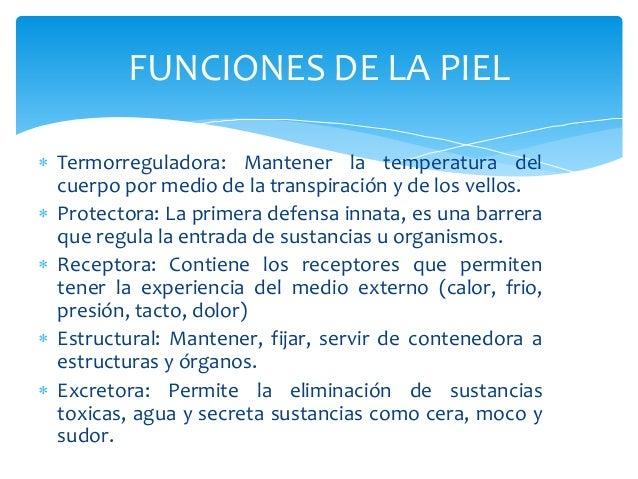 FUNCIONES DE LA PIEL   Termorreguladora: Mantener la temperatura del  cuerpo por medio de la transpiración y de los vello...