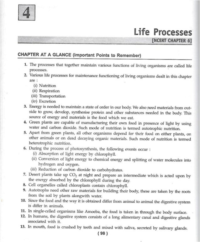 Science Sample Paper BiologyLife Process