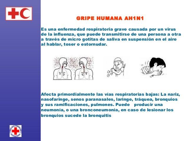 GRIPE HUMANA AH1N1  Es una enfermedad respiratoria grave causada por un virus de la influenza, que puede transmitirse de ...