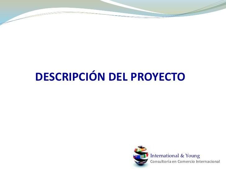 DESCRIPCIÓN DEL PROYECTO<br />International & YoungConsultoría en Comercio Internacional<br />