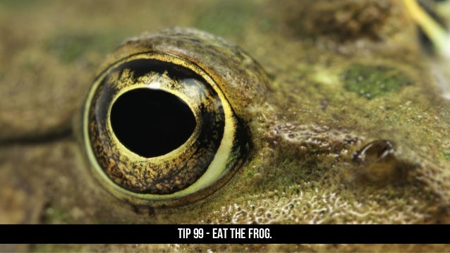 TIP 99 - Eat the frog.