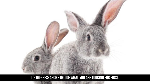 TIP 66 - Research - decide what you are looking for first.