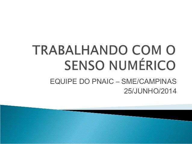 EQUIPE DO PNAIC – SME/CAMPINAS  25/JUNHO/2014
