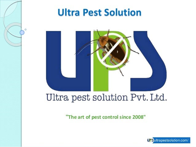 """Ultra Pest Solution ultrapestsolution.com/ """"The art of pest control since 2008"""""""