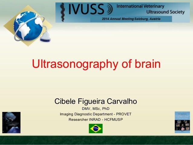 Ultrasonography of brain  Cibele Figueira Carvalho  DMV, MSc, PhD  Imaging Diagnostic Department - PROVET  Researcher INRA...