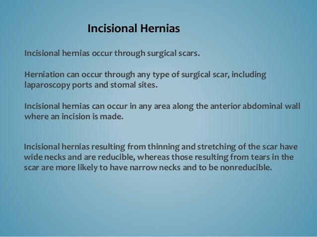 Incisional hernias can occur where natural hernias cannot, through the bellies of muscles that have been incised.