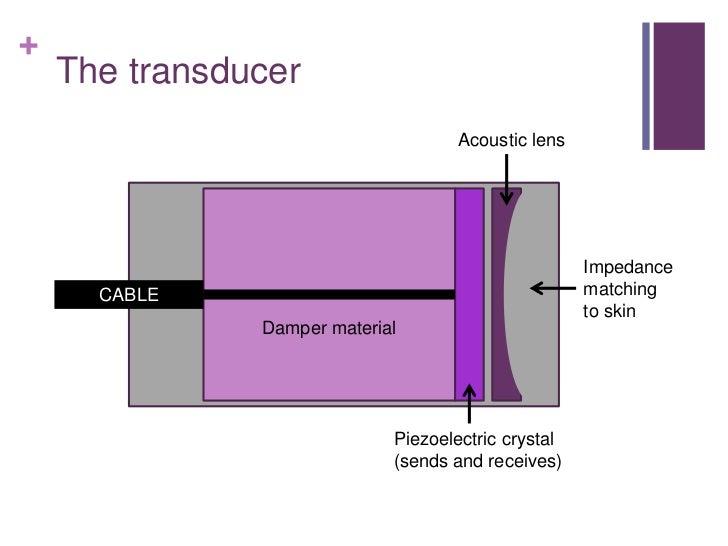 Ultrasound Slide 3