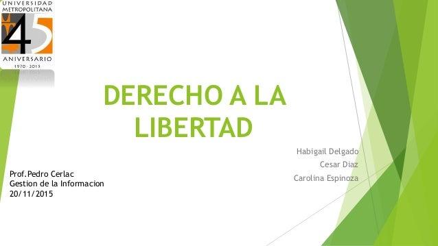 DERECHO A LA LIBERTAD Habigail Delgado Cesar Diaz Carolina EspinozaProf.Pedro Cerlac Gestion de la Informacion 20/11/2015