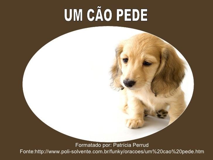 UM CÃO PEDE Formatado por: Patrícia Perrud Fonte:http://www.poli-solvente.com.br/funky/oracoes/um%20cao%20pede.htm