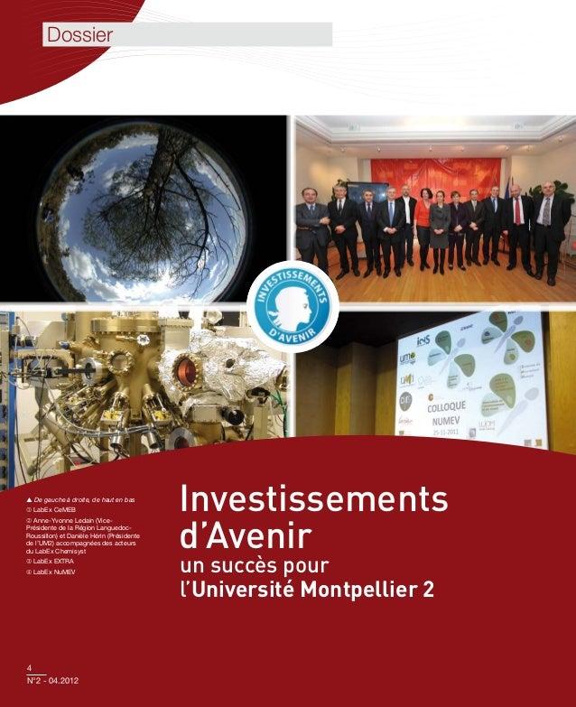 Dossier De gauche à droite, de haut en bas LabEx CeMEB                              Investissements                     ...