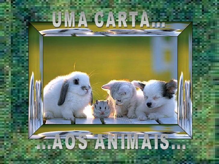 UMA CARTA... ...AOS ANIMAIS...