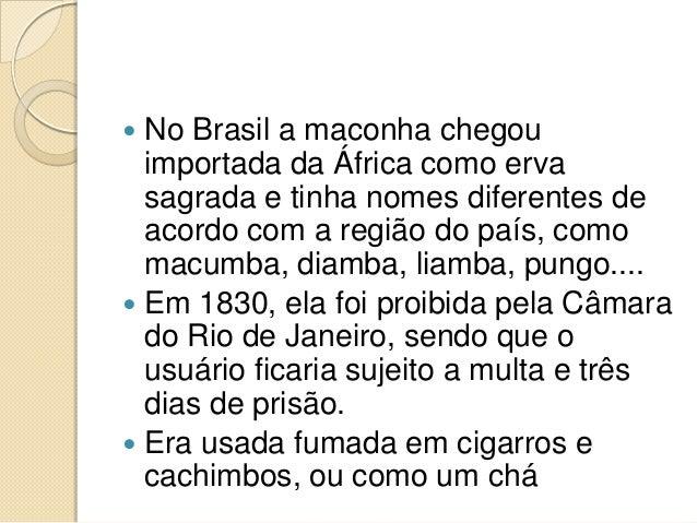 Ah pura cocaina - 4 1