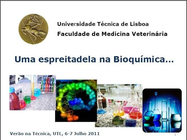 Verão na Técnica - Uma espreitadela na Bioquímica...