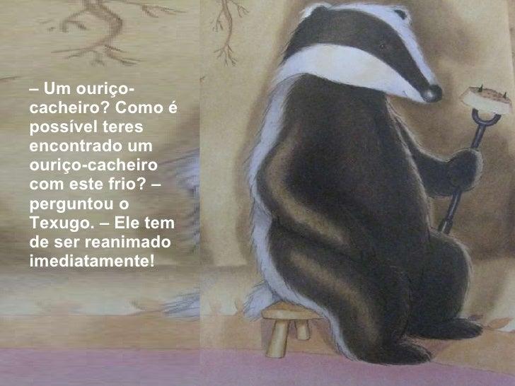 <ul><li>–  Um ouriço-cacheiro? Como é possível teres encontrado um ouriço-cacheiro com este frio? – perguntou o Texugo. – ...
