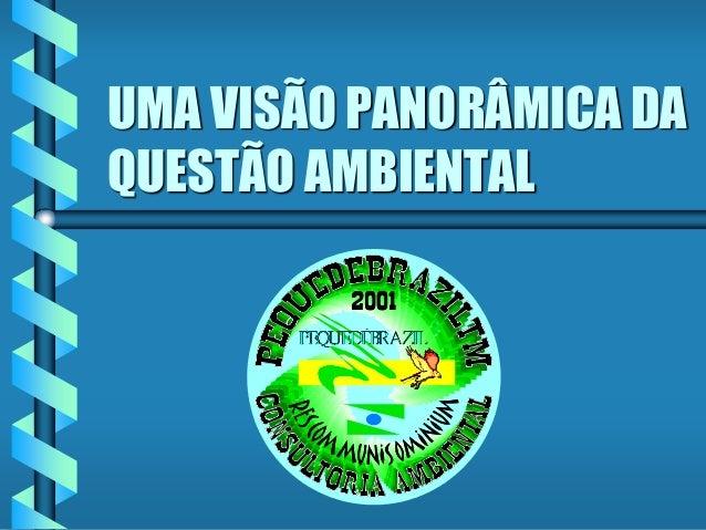 UMA VISÃO PANORÂMICA DA QUESTÃO AMBIENTAL