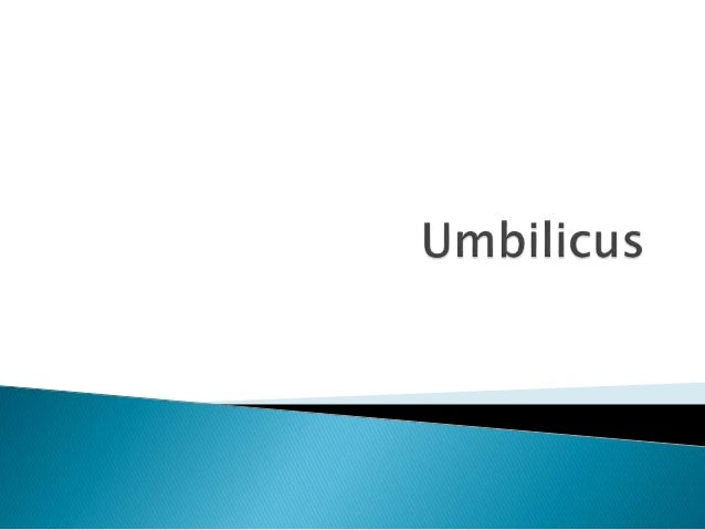 Umbilicus is a scar  Usually located at the level of L3 – L4  linea alba is well defined above and illdefined  below  line...