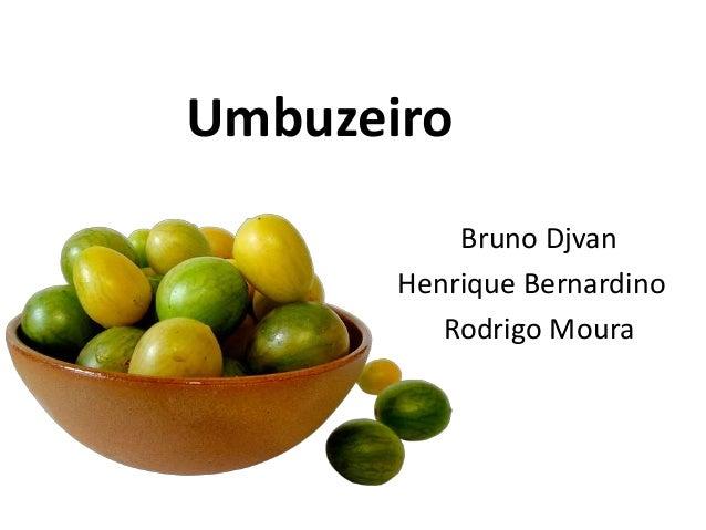 Umbuzeiro Bruno Djvan Henrique Bernardino Rodrigo Moura