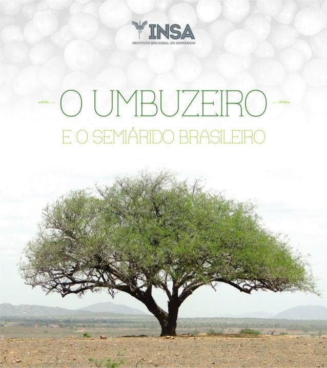 Governo do Brasil Presidenta da República Dilma Vana Rousseff Vice-Presidente da República Michel Miguel Elias Temer Lulia...