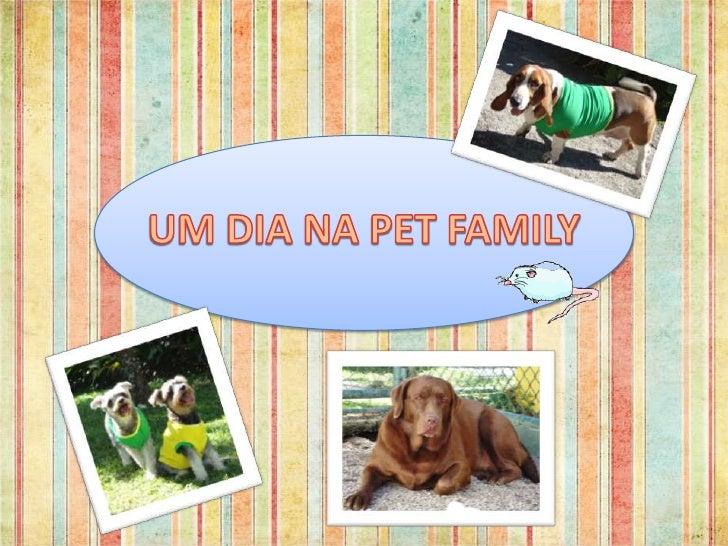 UM DIA NA PET FAMILY<br />