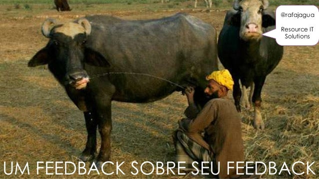 UM FEEDBACK SOBRE SEU FEEDBACK @rafajagua Resource IT Solutions