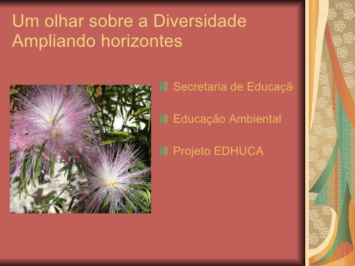 Um olhar sobre a Diversidade Ampliando horizontes <ul><li>Secretaria de Educação Continuada, Alfabetização, Diversidade e ...
