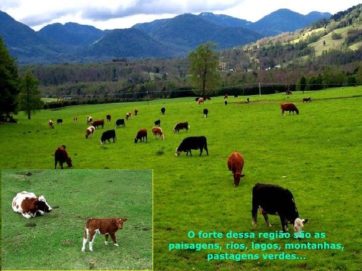 O forte dessa região são as paisagens, rios, lagos, montanhas, pastagens verdes...