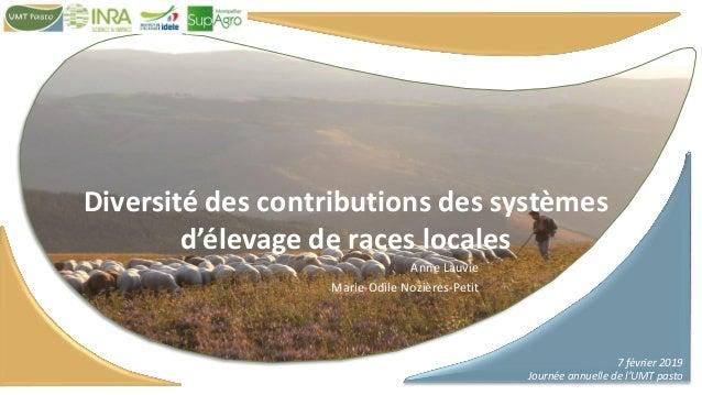 7 février 2019 Journée annuelle de l'UMT pasto Diversité des contributions des systèmes d'élevage de races locales Anne La...