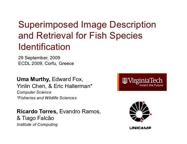 Superimposed Image Descriptionand Retrieval for Fish SpeciesIdentification29 September, 2009ECDL 2009, Corfu, GreeceUma Mu...