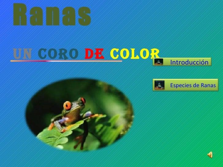 Ranas Un   Coro   de   Color Especies de Ranas Introducción