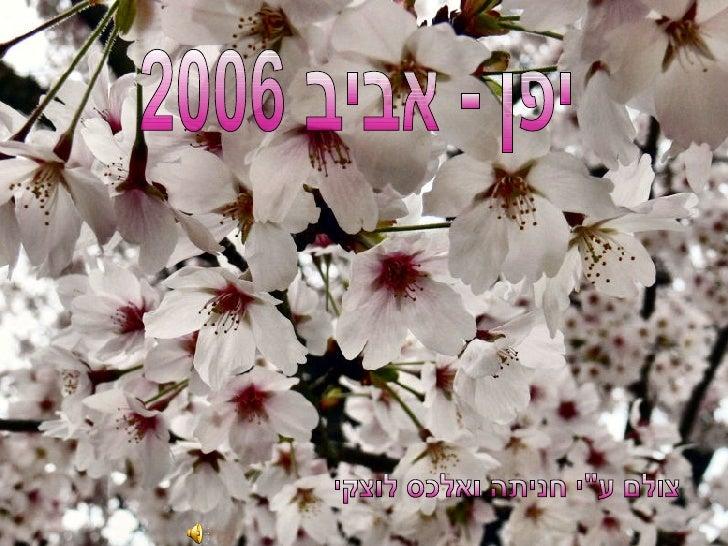 """יפן - אביב 2006 צולם ע""""י חניתה ואלכס לוצקי"""