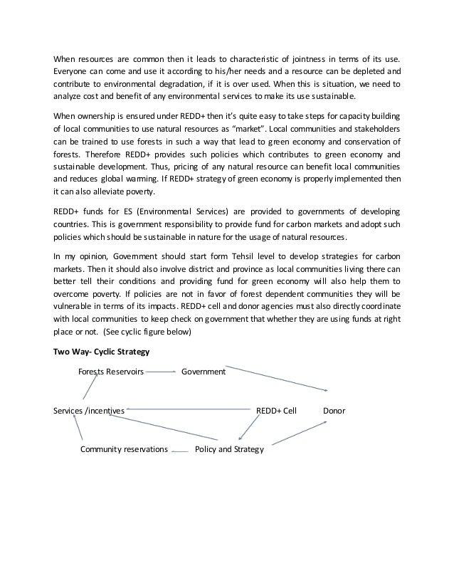 Essay on UN-REDD+ strategy 2011-2015 Slide 3