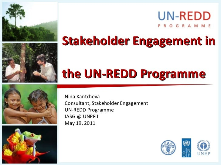 Stakeholder Engagement in  the UN-REDD Programme Nina Kantcheva Consultant, Stakeholder Engagement UN-REDD Programme IASG ...