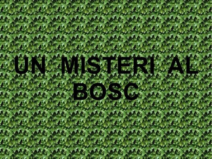 UN  MISTERI  AL BOSC