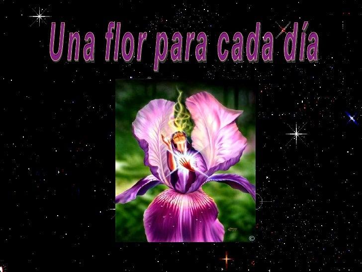 Una flor para cada día